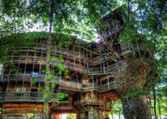 Архитектура: «Небоскреб на дереве», или Как живется энтузиасту в 80 комнатах, которые он построил по божьему велению